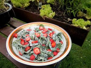 Kolumbianischer Spinat-Erdbeersalat